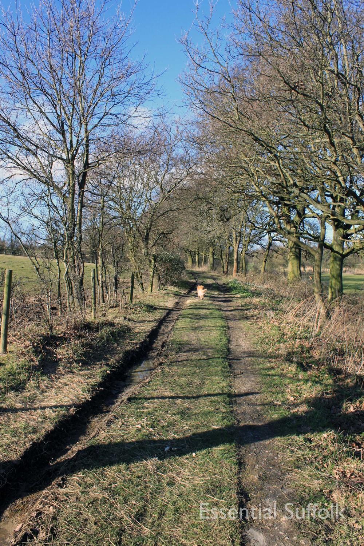 Westerfield Route 2 09.jpg