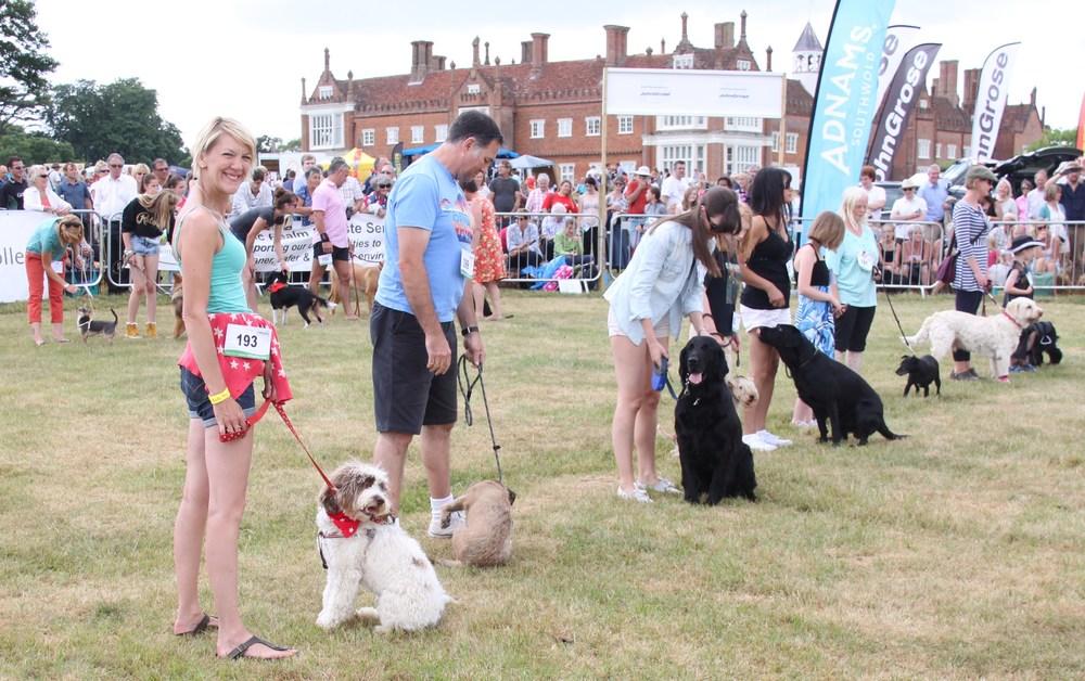 Suffolk Dog Day 2013 500.JPG