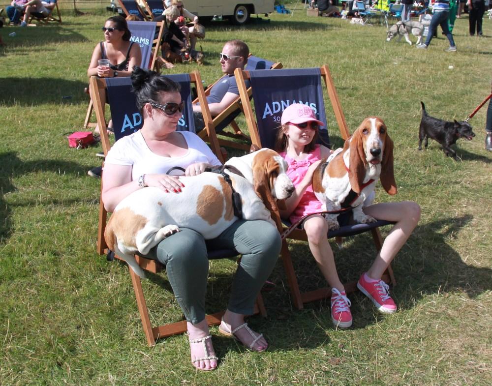 Suffolk Dog Day 2013 699.JPG