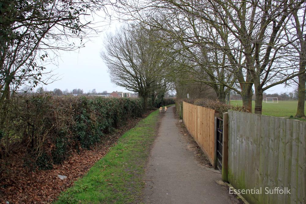 Stowupland Dog Walk 003.jpg