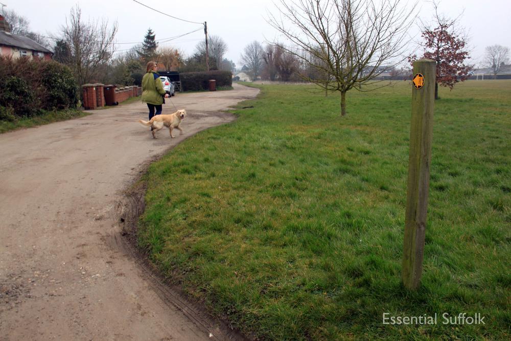 Stowupland Dog Walk 027.jpg