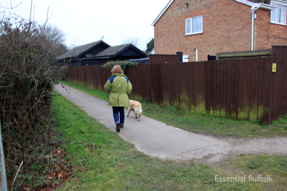 Stowupland Dog Walk 030.jpg