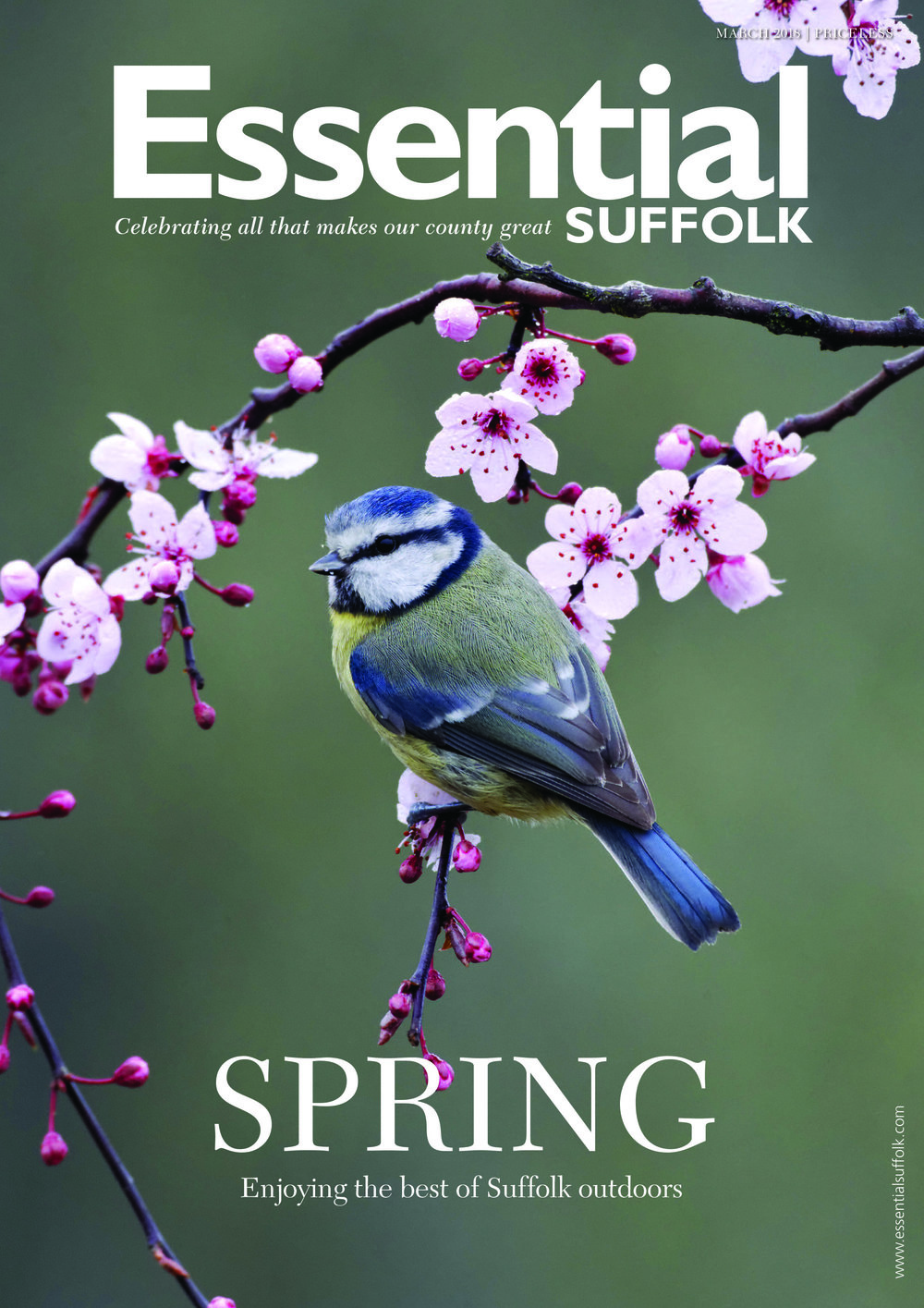 Essential Suffolk March 2018