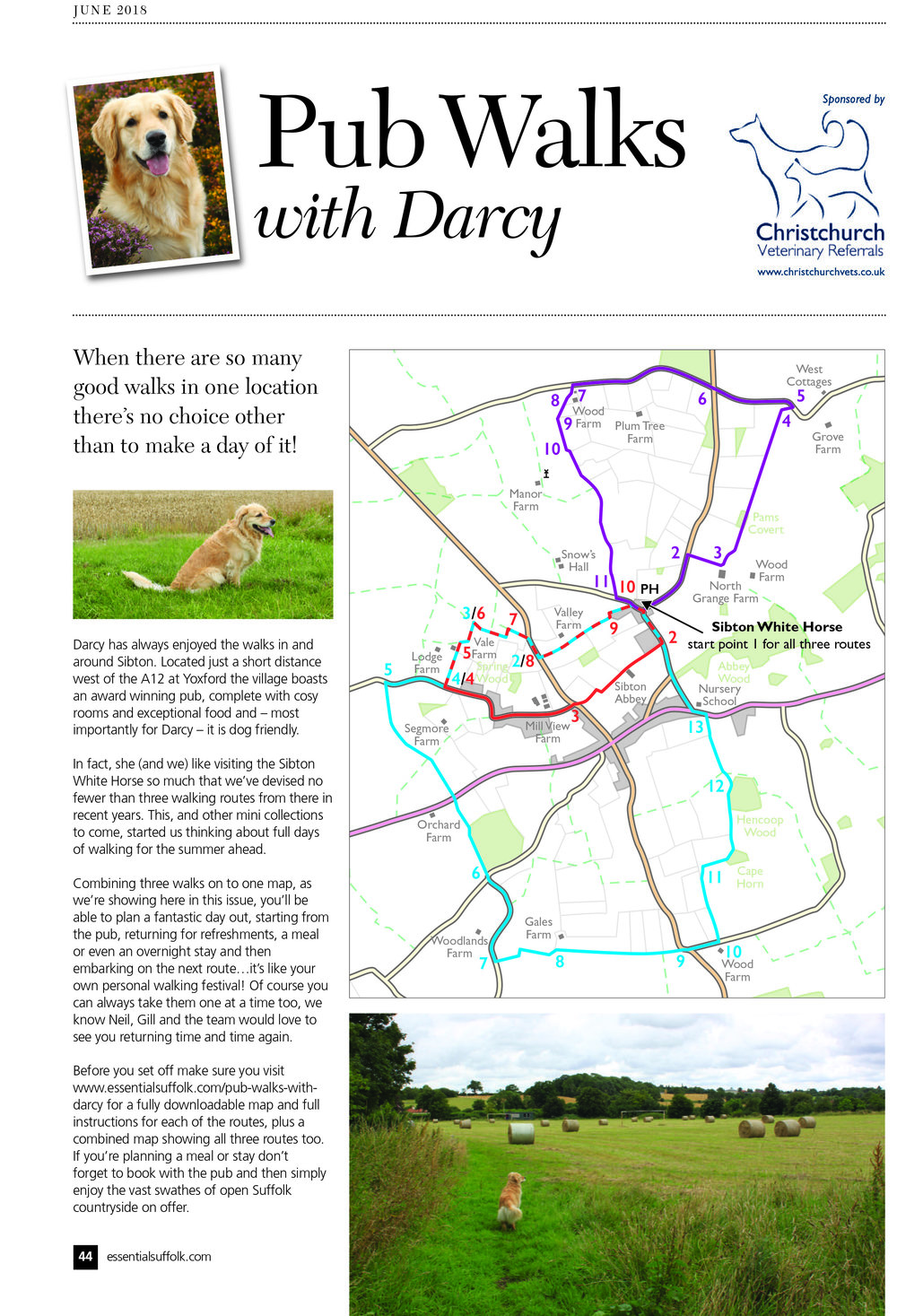 Sibton dog walks route 1,2 and 3 page 1.jpg