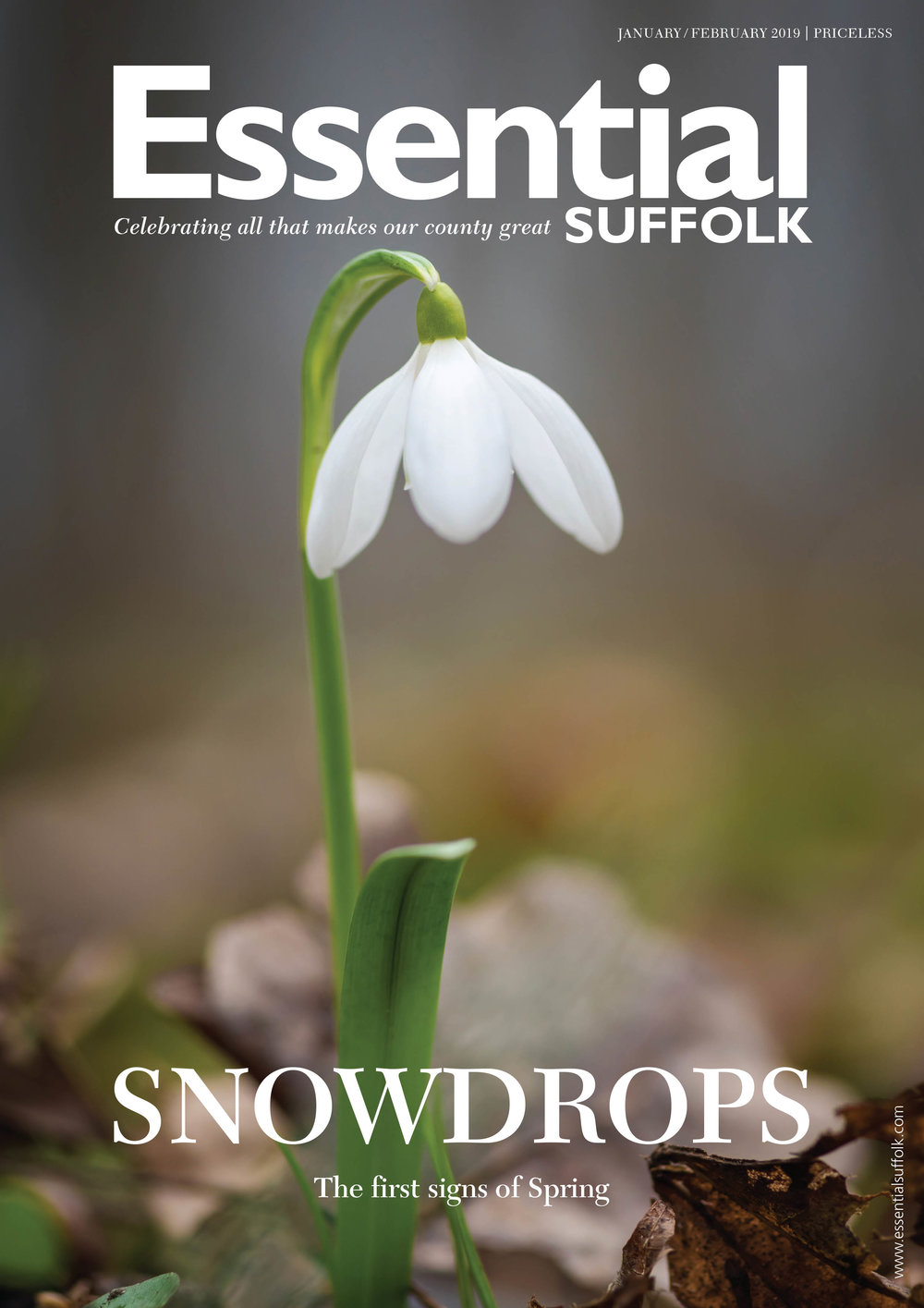 Essential Suffolk Jan/Feb 2019