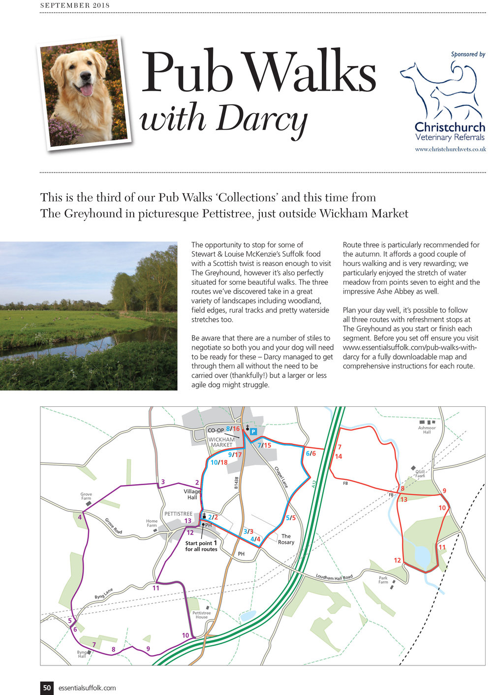 Essential Suffolk Pettistree dog walks page 1