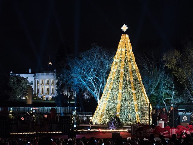 The 2015 National Christmas Tree. Photo courtesy of WUSA9/Getty Images.