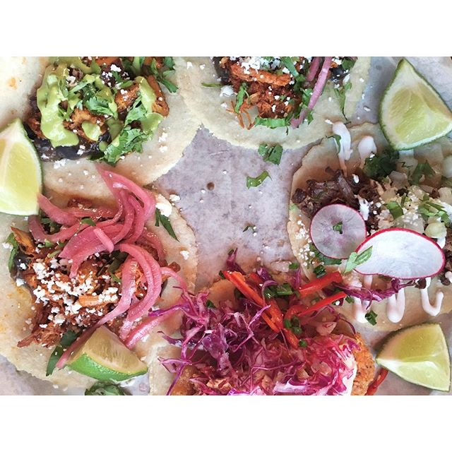 Hongos (portobello, poblano, queso fresco, bell pepper, kale slaw, cotija cheese) and Pollo Asado (marinated grilled chicken, black beans, jicama, pickled onion, tomatillo crema, cilantro) tacos! 🌮🌮 . . #coasttoroastgoescoasttocoast #dawsonsontherun  City #cleveland / Neighborhood #ohiocity