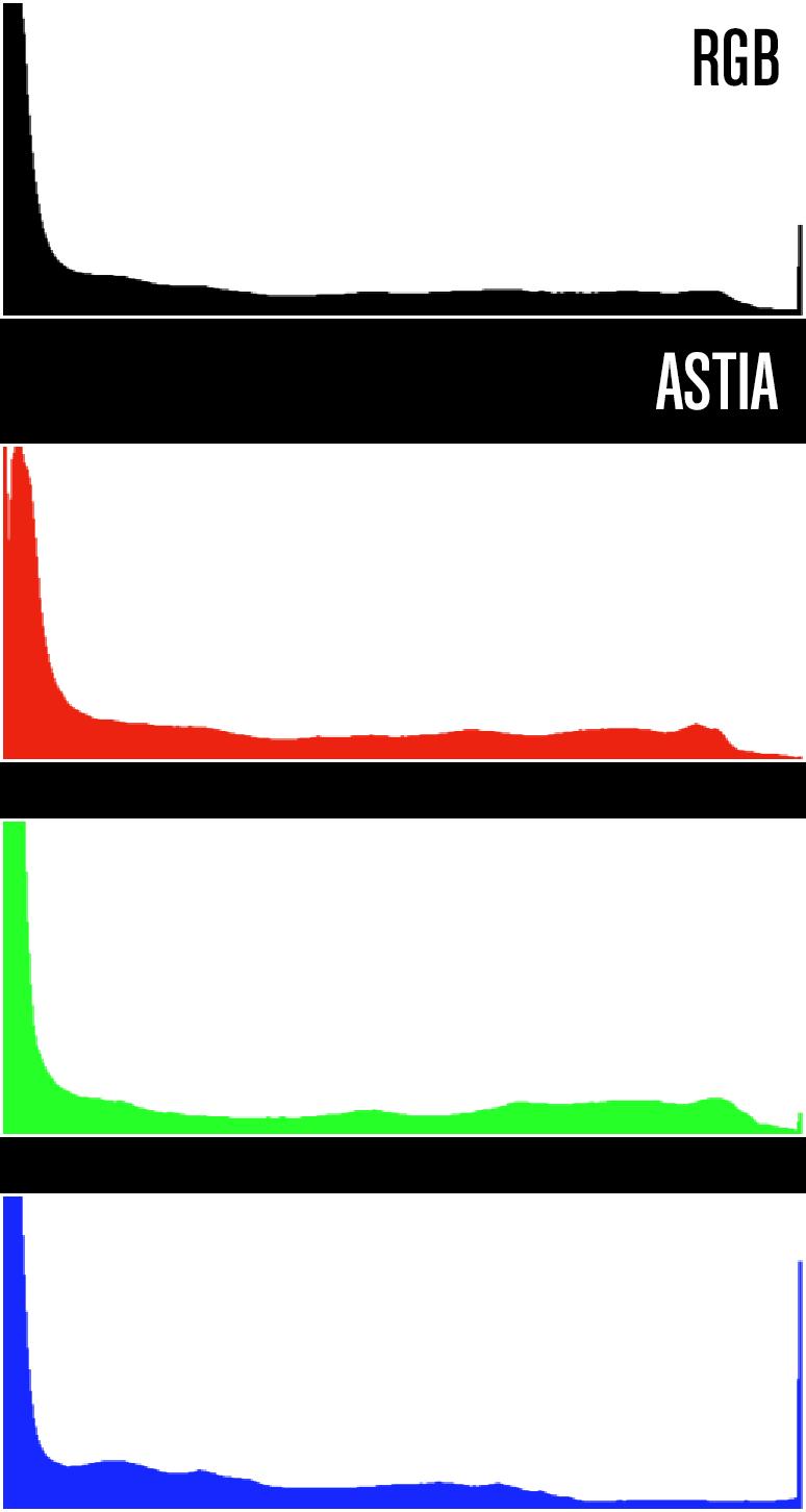 Astia.png