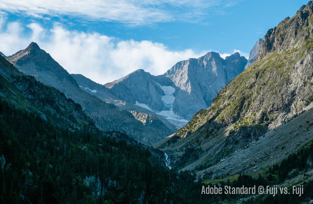 1 Adobe Standard.jpg