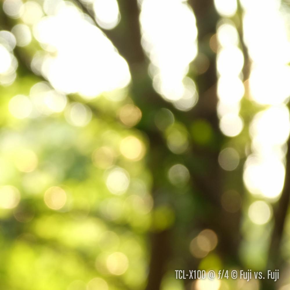 DSCF1043–140801-X100S–-33 mm.jpg
