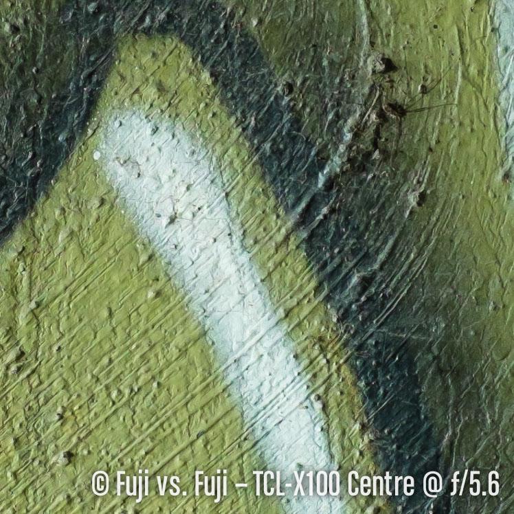 DSCF1300–140817-X100S–-33 mm.jpg