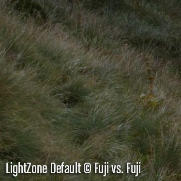LightZoneD3.jpg