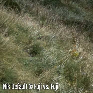 NikD3.jpg