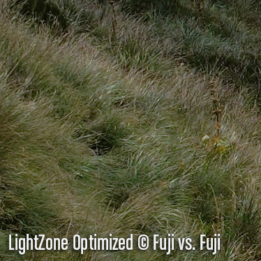 LightZoneO3.jpg