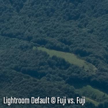 LightroomD5.jpg