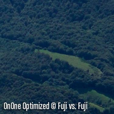 OnOneO5.jpg