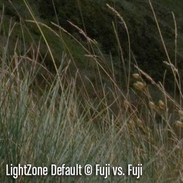 LightZoneD6.jpg