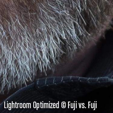 LightroomO2.jpg