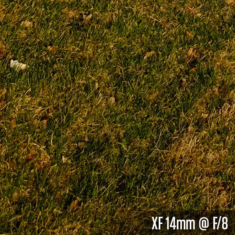 XF 14mm @ F_8.jpg