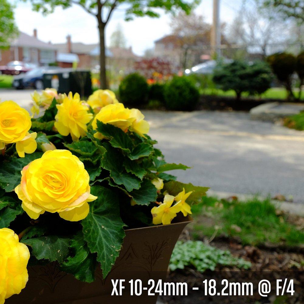 XF 10-24mm – 18.2mm @ F_4.jpg