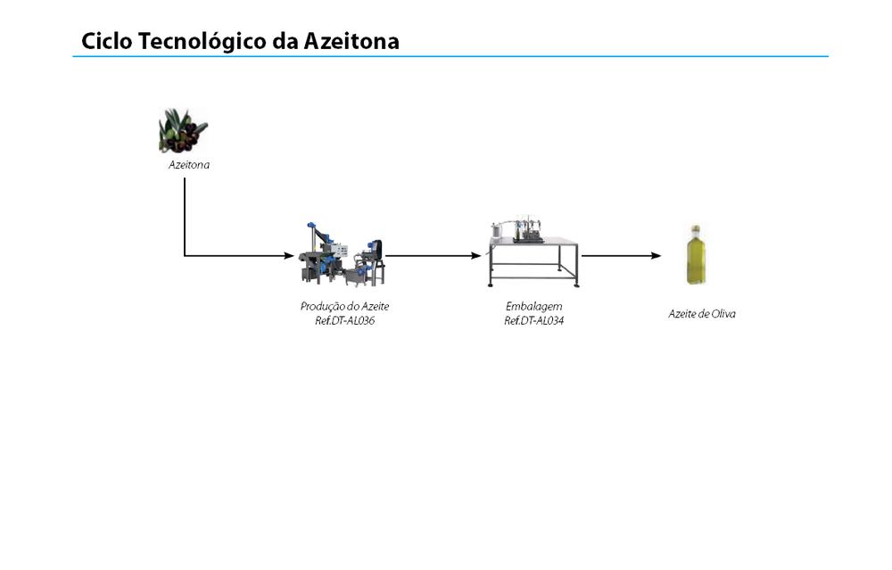 ciclo-azeitonas.png