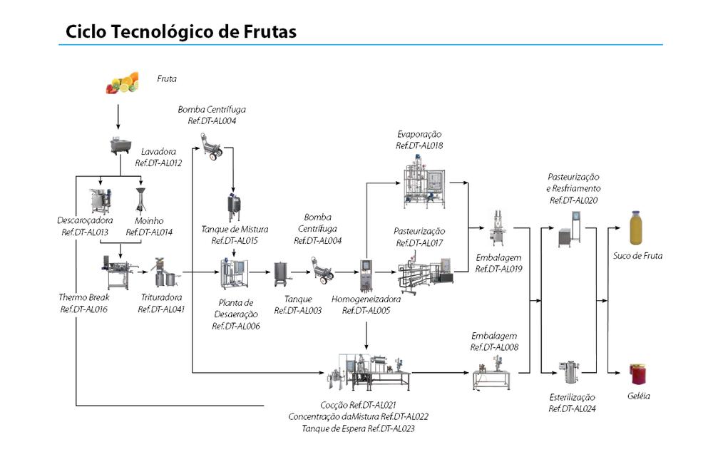 ciclo-frutas.png