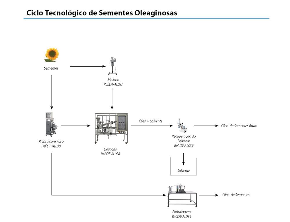 ciclo-oleaginosas.png