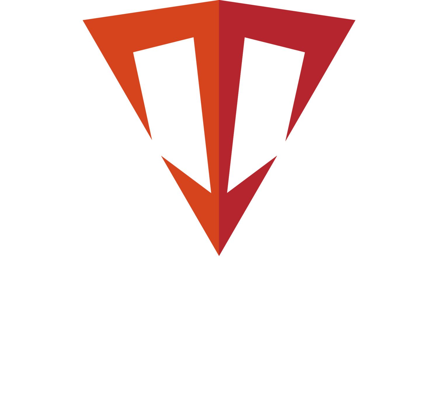 Triton Innovation Inc.