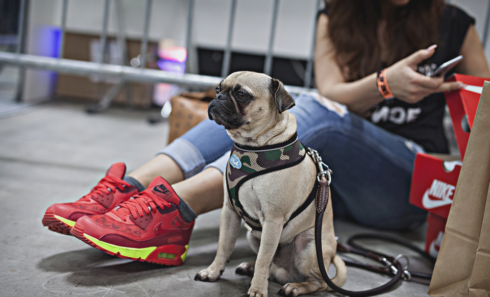 SneakerNess Cologne 20140233.jpg