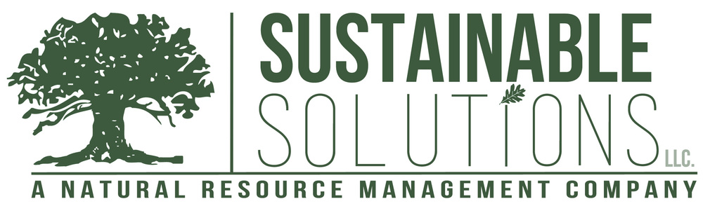 Sustainable Solutions logo.jpeg