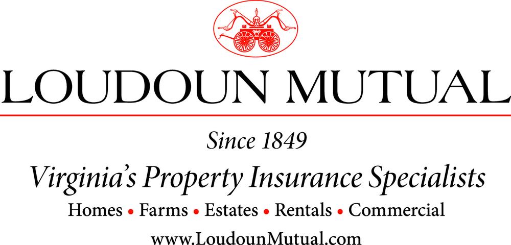 Viriginia Property Insurance Specialist Logo in JPG format.jpg