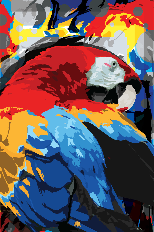 MacawSplash.jpg