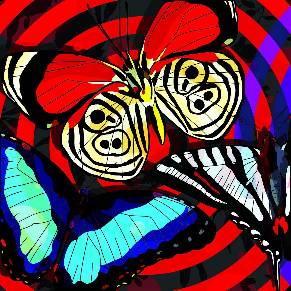 butterflyroom1.jpg