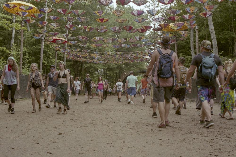 Festival (2.jpg