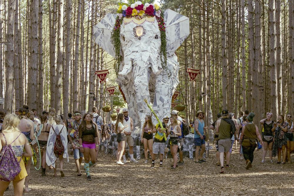Festival (9.jpg