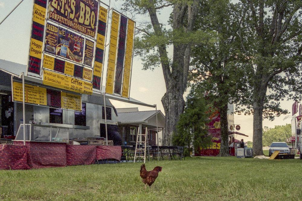 Festival (16.jpg