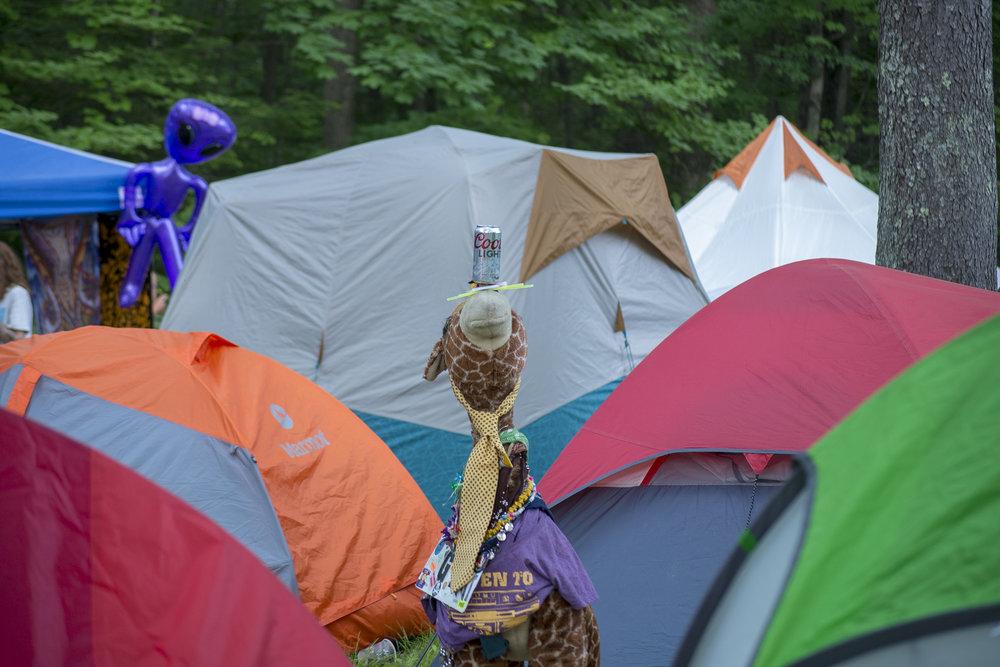 Festival (28.jpg