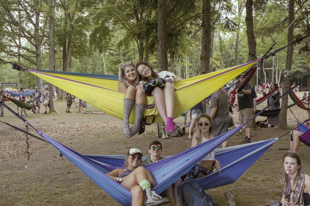Festival (30.jpg