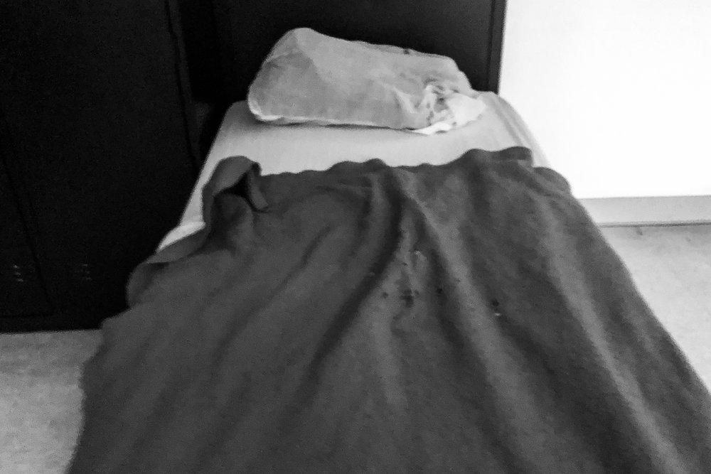 Sheltered (10.jpg