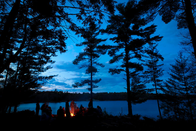 Rundt hele Oslofjorden er det flotte skogområder som inviterer til friluftsliv.