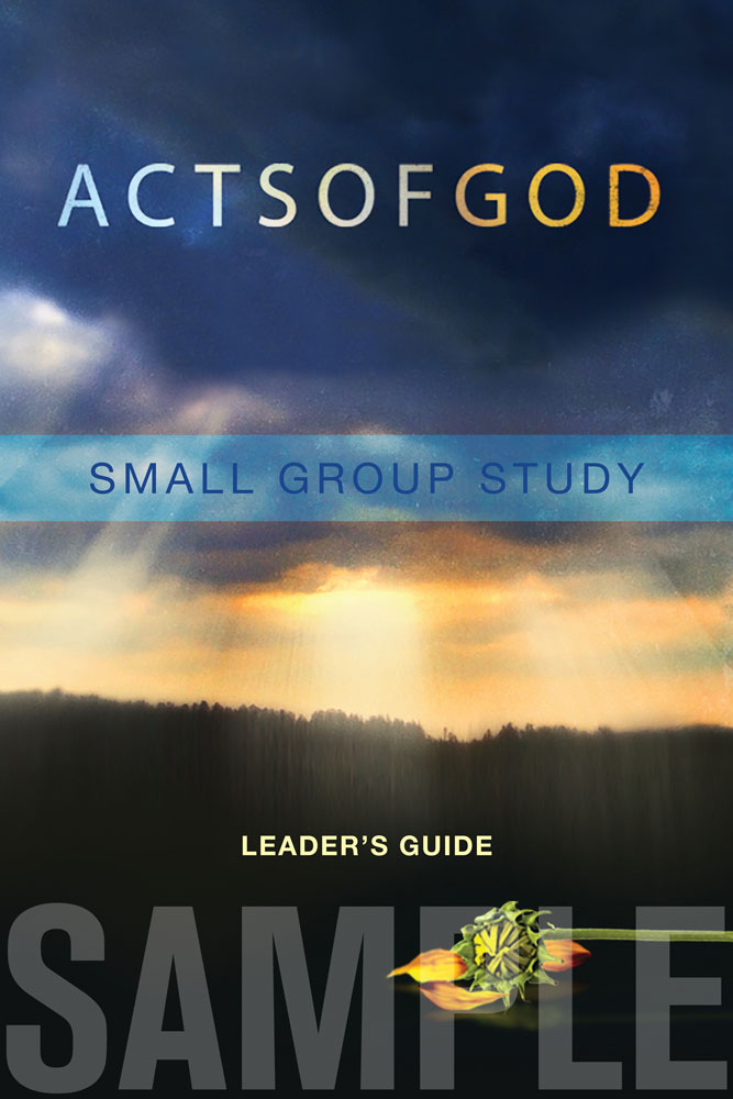 AOG-leadersguide-sample.jpg