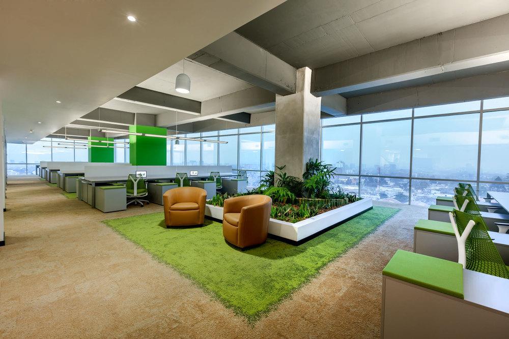 Las oficinas de Multiinversiones DEN con certificación LEED GOLD.