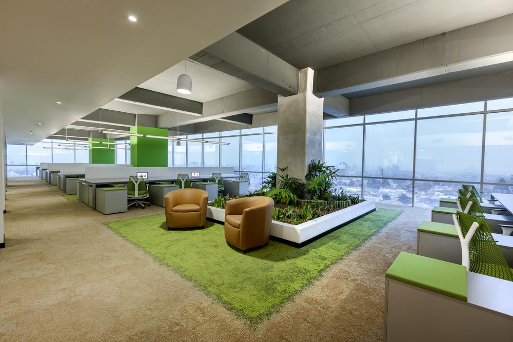 El área operativa de Multiinversiones DEN tiene un diseño basado en la naturaleza, valiéndose de colores y texturas.