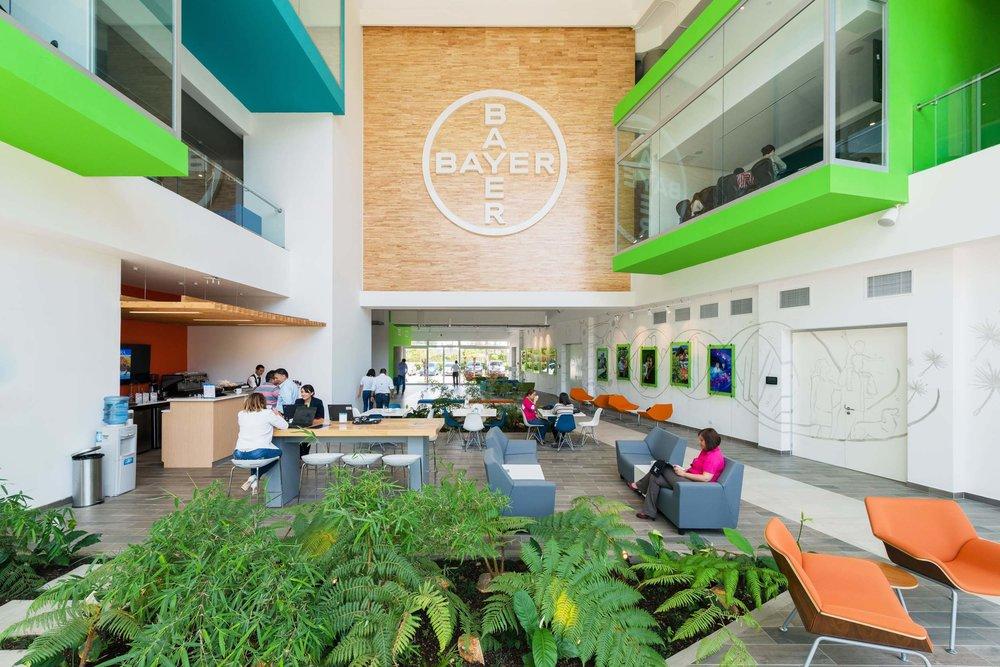 Interior Oficinas Centrales Bayer,Ciudad de Guatemala (Primer proyecto corporativo en la región en incorporar las 6 dimensiones wellness en el diseño de interiores).