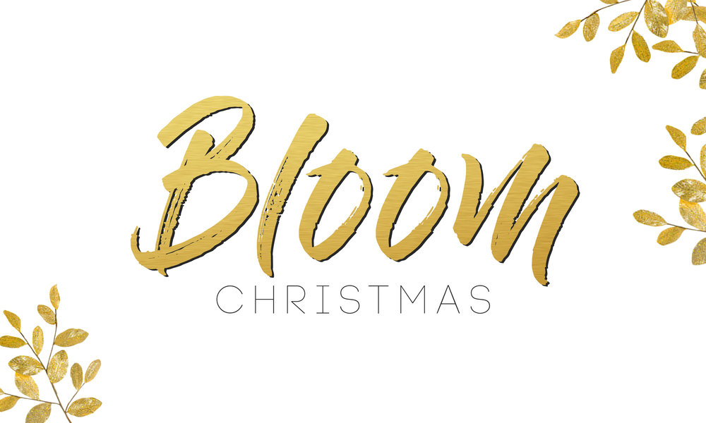 BloomChristmas_Graphic.jpg