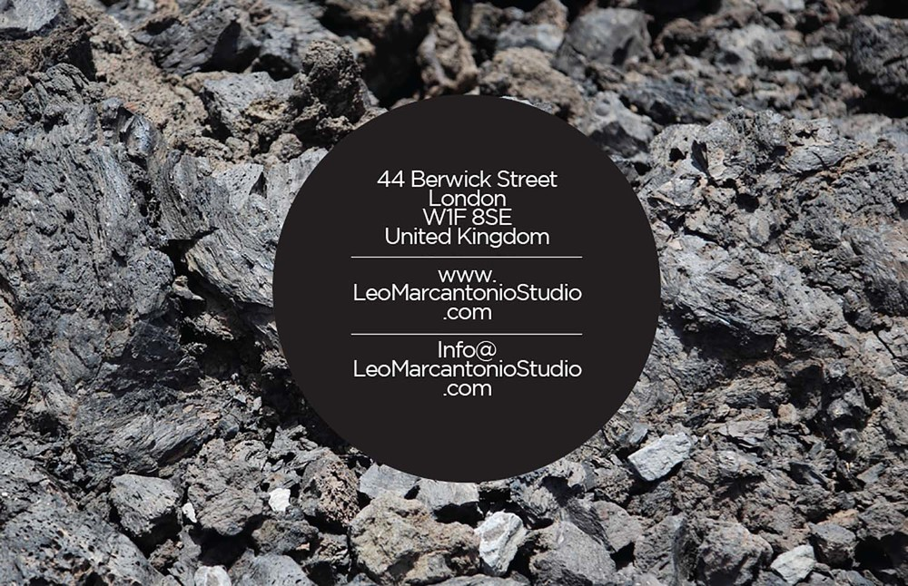 LMS_Business_Cards (dragged) 4 (2011).jpg