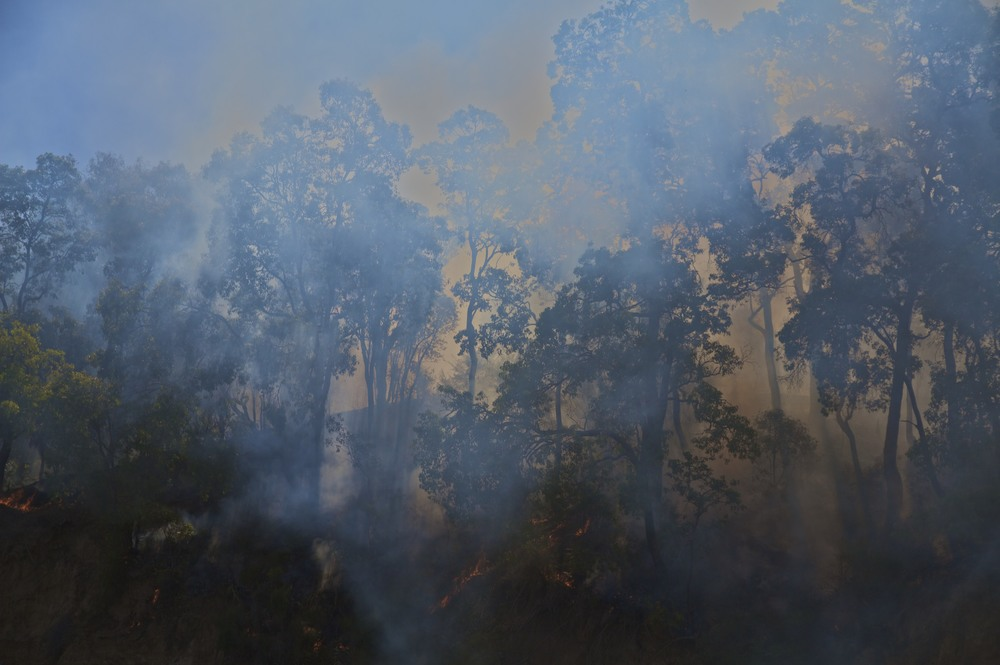 Forest fire, Perth, 2010.