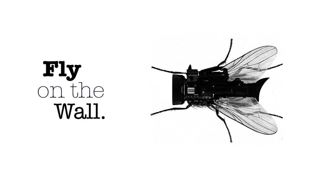 Fly on the Wall, Mockumentary Logo, 2008.