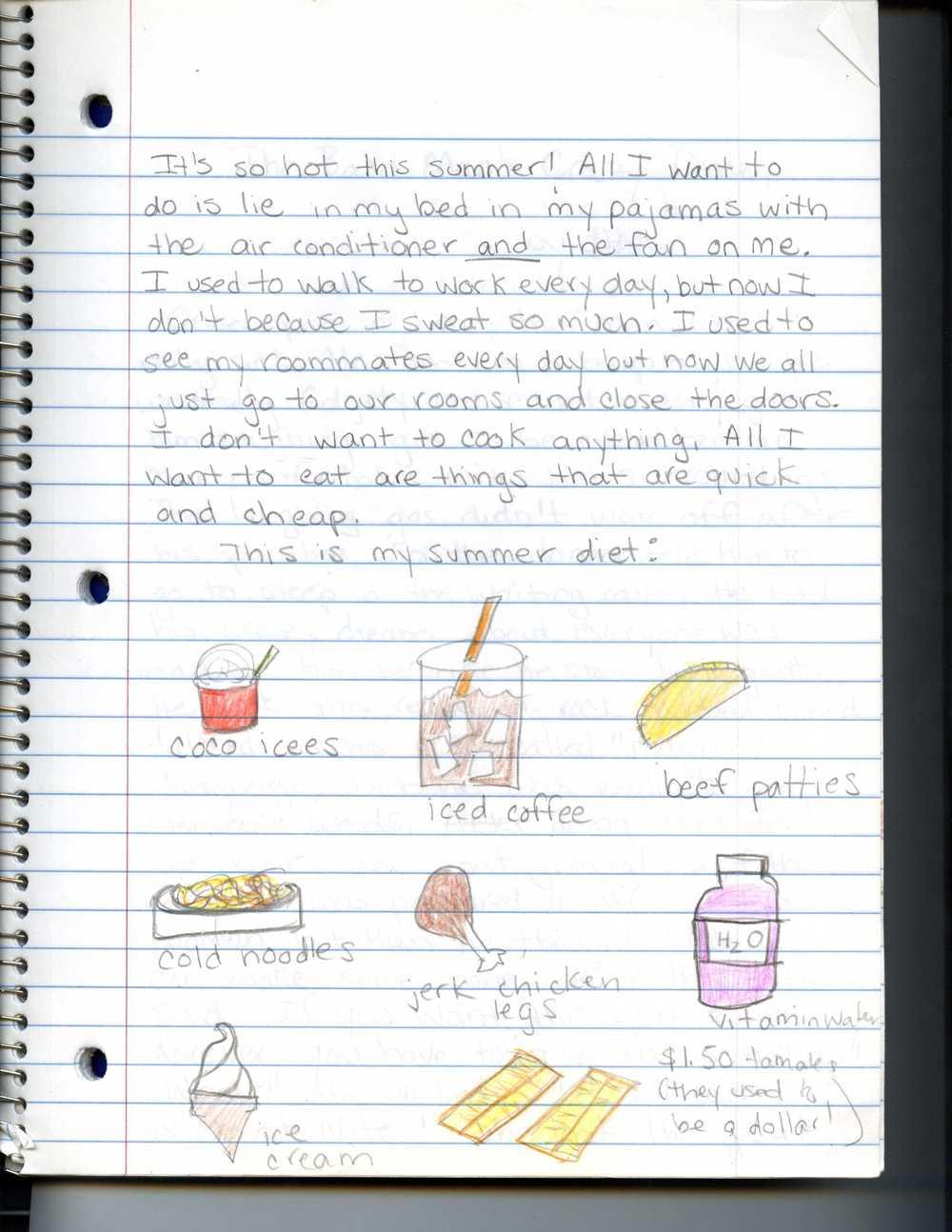 Summer diet Notebook.jpg